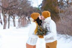 Portrait du jeunes sourire et baisers de couples dans l'appareil-photo dans le winte Photographie stock libre de droits