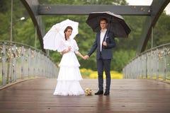 Portrait du rétro mariage de jeune homme et de femme Photo stock