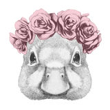 Portrait of Duck with floral head wreath. Stock Photo