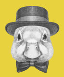 Portrait of Duck with hat and bow tie. Royalty Free Stock Images