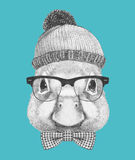 Portrait of Duck with hat, glasses and bow tie. Stock Image