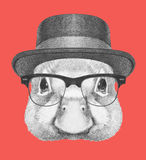 Portrait of Duck with hat and glasses. Royalty Free Stock Images