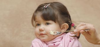 Portrait of eating baby. Wth mother`s hand Royalty Free Stock Photo