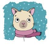 Portrait einer siamesischen Katze Winter Stockbild