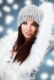 Portrait einer Winterfrau Stockfotos