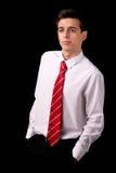Portrait eines jungen Geschäftsmannes stockbilder
