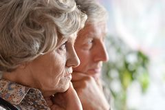 Portrait of an elder couple Royalty Free Stock Photography