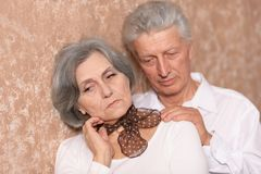 Portrait of an elder couple Royalty Free Stock Images