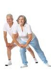 Portrait of  Elder  Couple Royalty Free Stock Photography