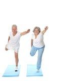 Portrait of  Elder  Couple Royalty Free Stock Images