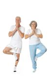 Portrait of  Elder  Couple Stock Images