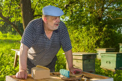 Portrait of elderly bee-keeper on an apiary. Outdoor portrait of elderly bee-keeper on an apiary Stock Photo