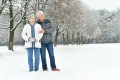 Portrait of elderly couple Stock Photos
