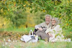 Portrait of elderly couple having a picnic in park royalty free stock image