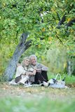 Portrait of elderly couple having a picnic in park stock photography