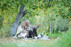 Portrait of elderly couple having a picnic in park royalty free stock images