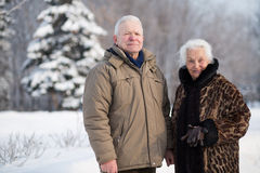 Portrait of an elderly couple in the park. In winter, focus on a man Stock Photos