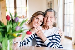 An elderly grandmother with an adult granddaughter at home. Stock Photography