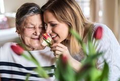 An elderly grandmother with an adult granddaughter at home, smelling flowers. royalty free stock photos
