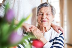An elderly grandmother with an adult granddaughter at home. Royalty Free Stock Photo