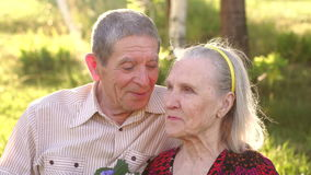 Portrait of elderly grandparents in a sunny park. stock footage