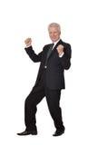 Portrait of an elderly happy businessman Royalty Free Stock Photo