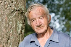 Portrait of the  elderly man Stock Photography