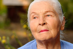 Portrait of the elderly woman Stock Image