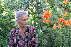 Portrait of the elderly woman in a garden Stock Images