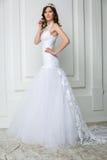 Portrait of elegant bride Royalty Free Stock Photos