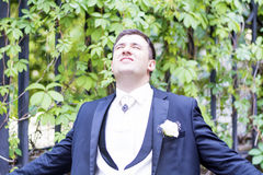 Portrait of elegant groom Royalty Free Stock Image