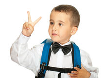 Portrait of elementary school boy Royalty Free Stock Photography