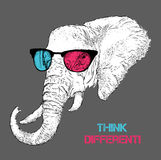 Portrait of the elephant in the colored glasses. Think different. Vector illustration. Royalty Free Stock Photography