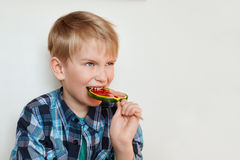 A portrait of emotional little kid with fair hair dressed in checked shirt biting sweet big colorful lollipop standing over white Stock Photo