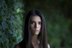 Portrait en gros plan d'une belle jeune femme caucasienne avec la peau propre, les longs cheveux et le maquillage occasionnel image libre de droits