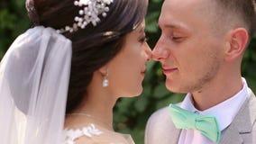 Portrait en gros plan des nez émouvants de couples de mariage dehors banque de vidéos