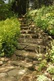 Portrait en pierre naturel d'escaliers Images libres de droits