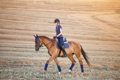 Portrait of equine sportswoman jumping on a hors Royalty Free Stock Photos