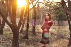 Portrait of an excited lady smiling and warming in sunset light in a city park.  Stock Images