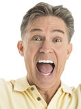 Portrait Of Excited Mature Man Screaming. Close-up portrait of excited mature man screaming against white background Stock Image