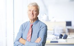 Executive senior manager portrait. Portrait of an executive senior businessman standing at office with arms crossed Stock Photo