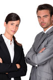 Portrait of executives Stock Photography