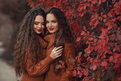Portrait extérieur d'automne de deux femmes Jeune beau jumeau de brune photo libre de droits