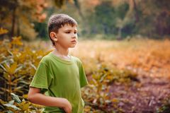 Portrait extérieur d'un garçon sérieux mignon Photographie stock