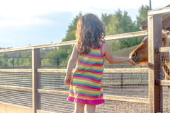 Portrait extérieur de jeune cheval de alimentation de sourire de fille d'enfant sur le fa Photo stock