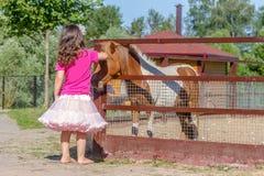 Portrait extérieur de jeune cheval de alimentation de sourire de fille d'enfant sur le fa Photo libre de droits