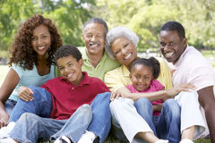 Portrait Of Extended Family Group In Park. Smiling royalty free stock photography