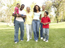 Portrait Of Extended Family Group In Park. Portrait Of Extended African American Family Group In Park Smiling royalty free stock photography