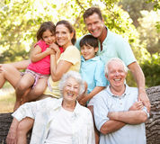 Portrait Of Extended Family Group In Park. Smiling At Camera royalty free stock photography