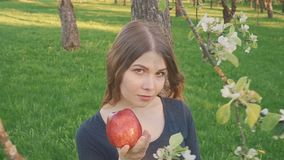 Portrait of face young beautiful woman holding apple on Spring blooming apple tree background summer nature. spring stock video